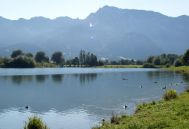 Forggensee-Runde