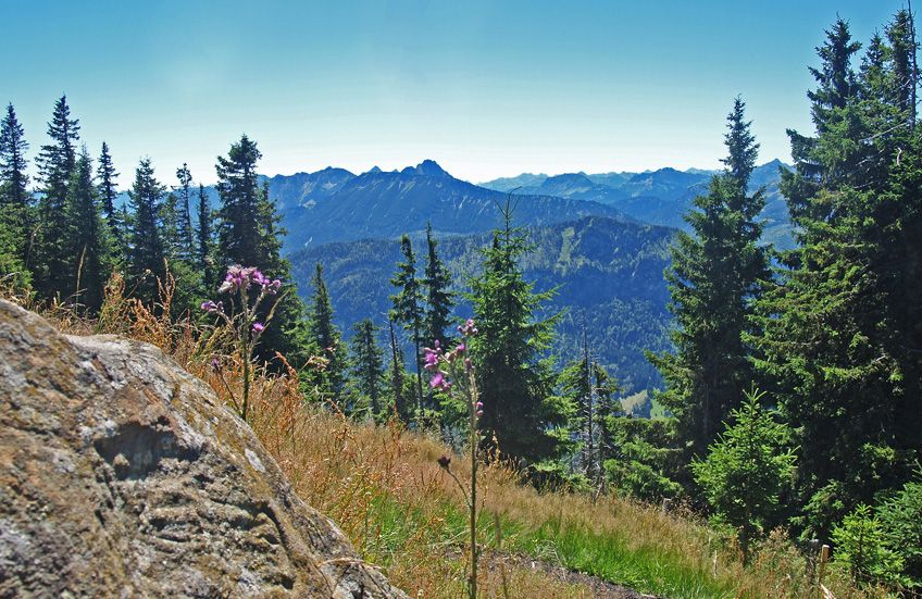 Wandern: Alpspitz-Runde